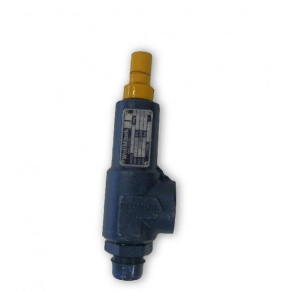 Wellmark relief valves