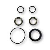 "1"" BUNA/BRASS PLUG VALVE SEAL KIT"