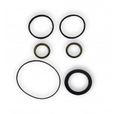 "3"" BUNA/BRASS PLUG VALVE SEAL KIT"